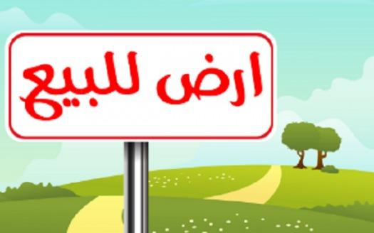 قطعة ارض للبيع في بغداد الوزيرية